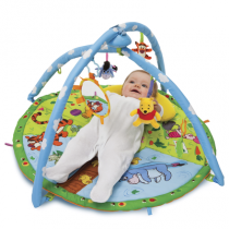 T71962_Magic Motion Playgym_ls